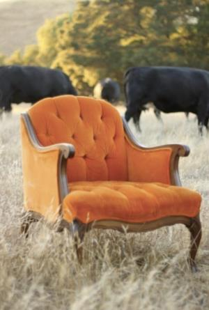 Where to find Poppy Wingback Chair in San Francisco