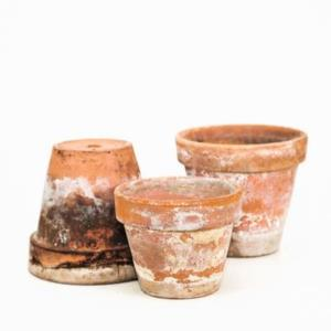 Where to find Terra Cotta Pots in San Francisco