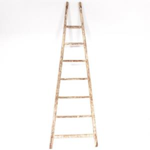 Where to find Wooden Ladder in San Francisco